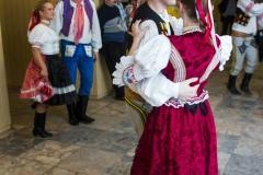 Krojovaná zábava I.ročník 31.1.2015 - 0032