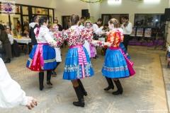 Krojovaná zábava I.ročník 31.1.2015 - 0075